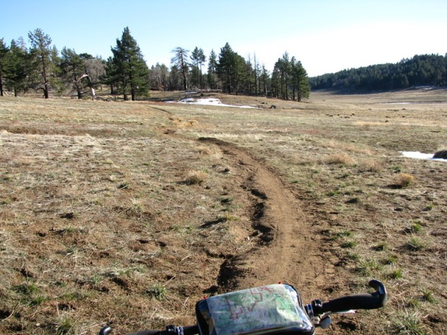 Trail through Big Laguna Meadow