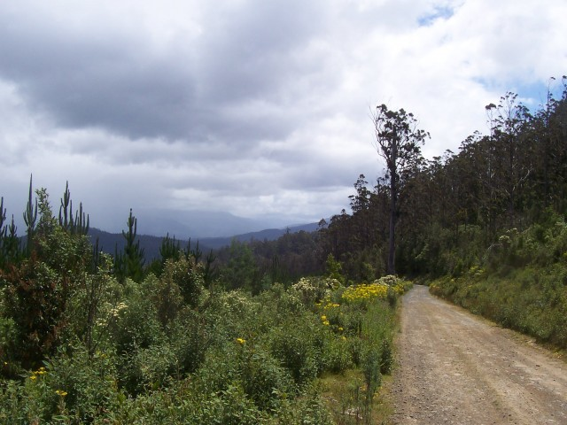 Serious rain clouds on the horizon, but flower-lined trails; who could ask for more?