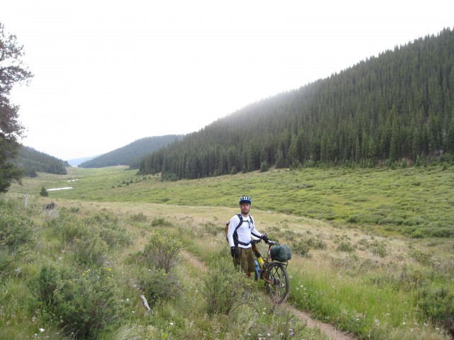 Colorado Trail meadow