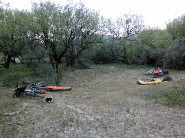 Our camping spot near the Gila River.