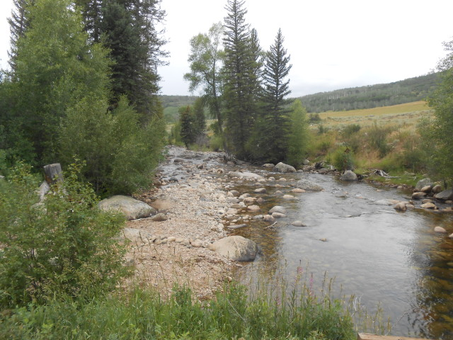 Creek on Hike